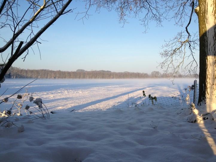 Foto_uitzicht_winter